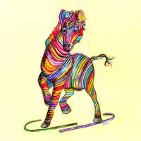 Multi-colored Zebra