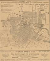 Vintage Houston Texas Railroad Map (1890)