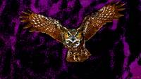 Flying Owl In Purple