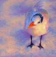 tern-bird-art