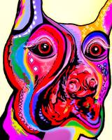 Doberman Close Up Bright Colors