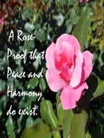 A Rose is Proof