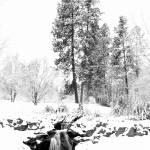 """Beautiful Winter"" by steveydphoto"