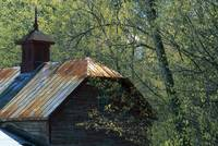 Clipped Barn Roof in Spring