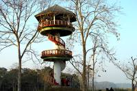 WATCH TOWER AT DOOARS  FOREST. INDIA