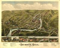 Aerial View of Seymour, Connecticut (1879)