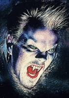 David Van Etten - The Lost Boys