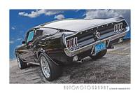 1967 Mustang Fastback Poster Color