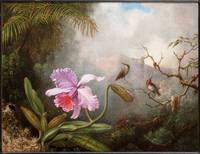 Cattleya Orchid with Two Hummingbirds by Martin Jo