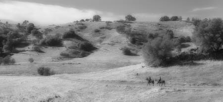 Panoramic of Horseback Riding, Cronan Ranch, near