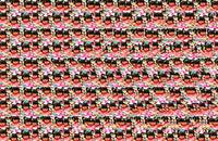 Star for the Girl Stereogram
