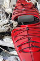 Red Kayak and Driftwood