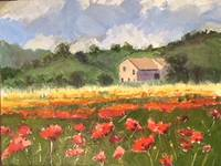 poppies in bloom 9x 12