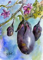 Eggplant and Blossoms Watercolors