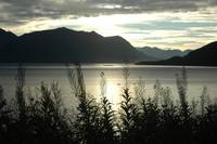 Turnagain Sunrise