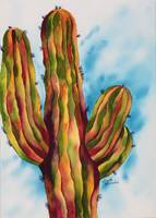 Vivid and Majestic Saguaro1