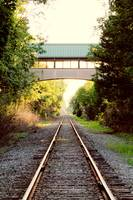 Sunlit Train Path