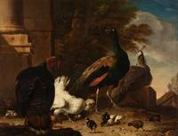 A Hen with Peacocks and a Turkey, Melchior d'Honde