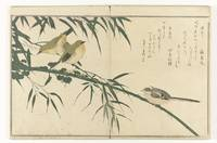 Long-tailed tit and white-eye, Kitagawa Utamaro, 1