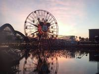 Disney Land, sunset