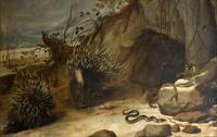 Porcupines And Vipers by Frans Snyders