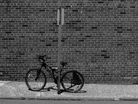 Hackensack, NJ - Bricks and Bicycle BW 2018