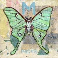 M for Moth