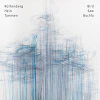 Bird Saw Buchla CD cover