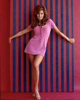 Raquel Welch up against the wall
