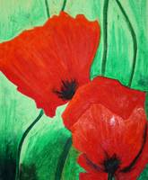 Mohnblumen - Poppies