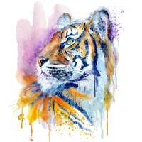 Young Tiger Watercolor portrait