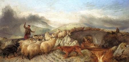 Richard Ansdell - Collecting Sheep for Clipping in
