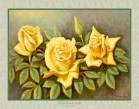 yellow rose 24x36 matte yellow rose
