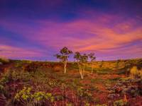 Sunset in the Kimberleys