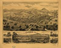 Bird's eye view of Healdsburg, California (1876)