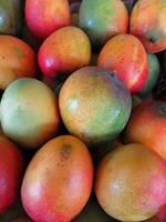 Hawaiian Mangoes