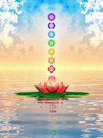 Sacred Lotus - The Seven Chakras First Edition