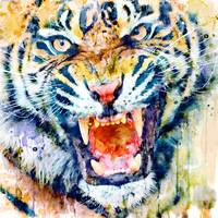 Tiger Face Watercolor close-up