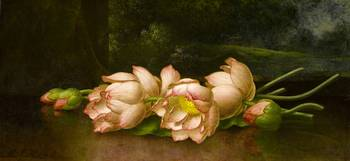 Martin Johnson Heade 1819-1904 Flowers