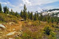 Donner Lake Rim Trail 1