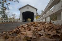 20171111 - Pengra Covered Bridge - 3607