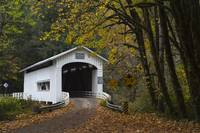 20171029 - Wild Cat Covered Bridge - 3391