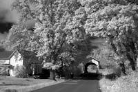 20160906 - HarrisBridge - IR - 6813
