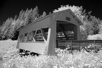 20120708 - Sandy Creek Bridge IR - 6188