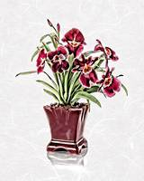 Burgundy Orchids in Claret Vase on White Rice Pape