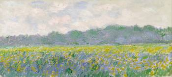 CLAUDE MONET - FIELD OF YELLOW IRISES AT GIVERNY,