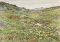 A moorland stream- watercolour by William Craigmil