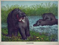 Vintage Illustration of Hippopotamuses (1874)