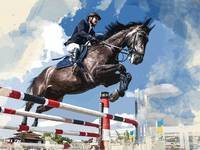 Rider Jumping Horse in Competition