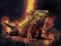 Iguana Lizard in Burning Fires of Hell
